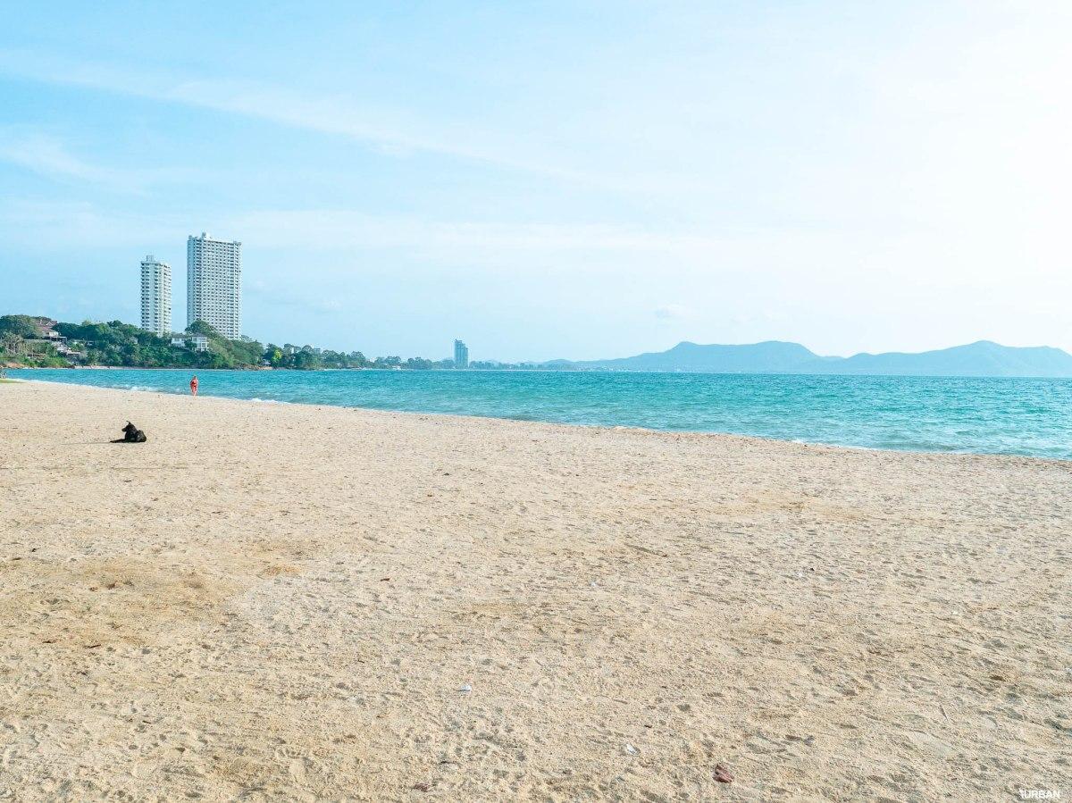 7 ชายหาดทะเลพัทยา ที่ยังสวยสะอาดน่าเที่ยวใกล้กรุงเทพ ไม่ต้องหนีร้อนไปไกล ก็พักได้ ชิลๆ 15 - Beach