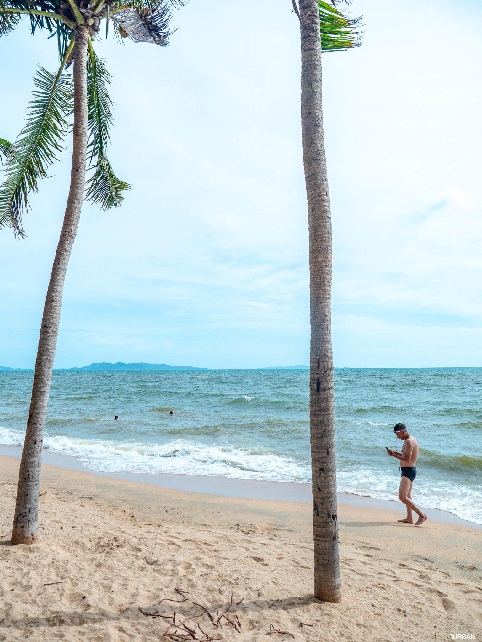 7 ชายหาดทะเลพัทยา ที่ยังสวยสะอาดน่าเที่ยวใกล้กรุงเทพ ไม่ต้องหนีร้อนไปไกล ก็พักได้ ชิลๆ 134 - Beach