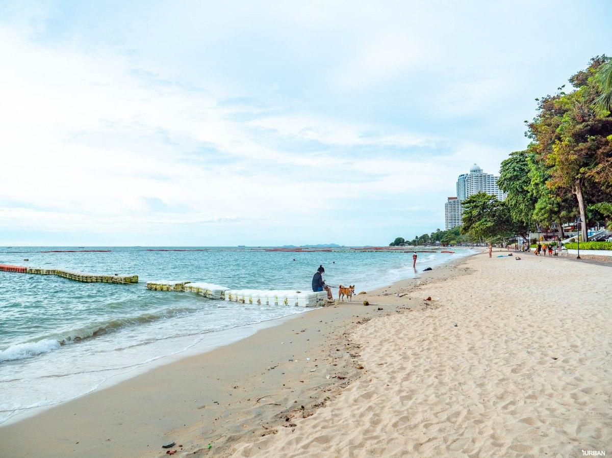 7 ชายหาดทะเลพัทยา ที่ยังสวยสะอาดน่าเที่ยวใกล้กรุงเทพ ไม่ต้องหนีร้อนไปไกล ก็พักได้ ชิลๆ 83 - Beach