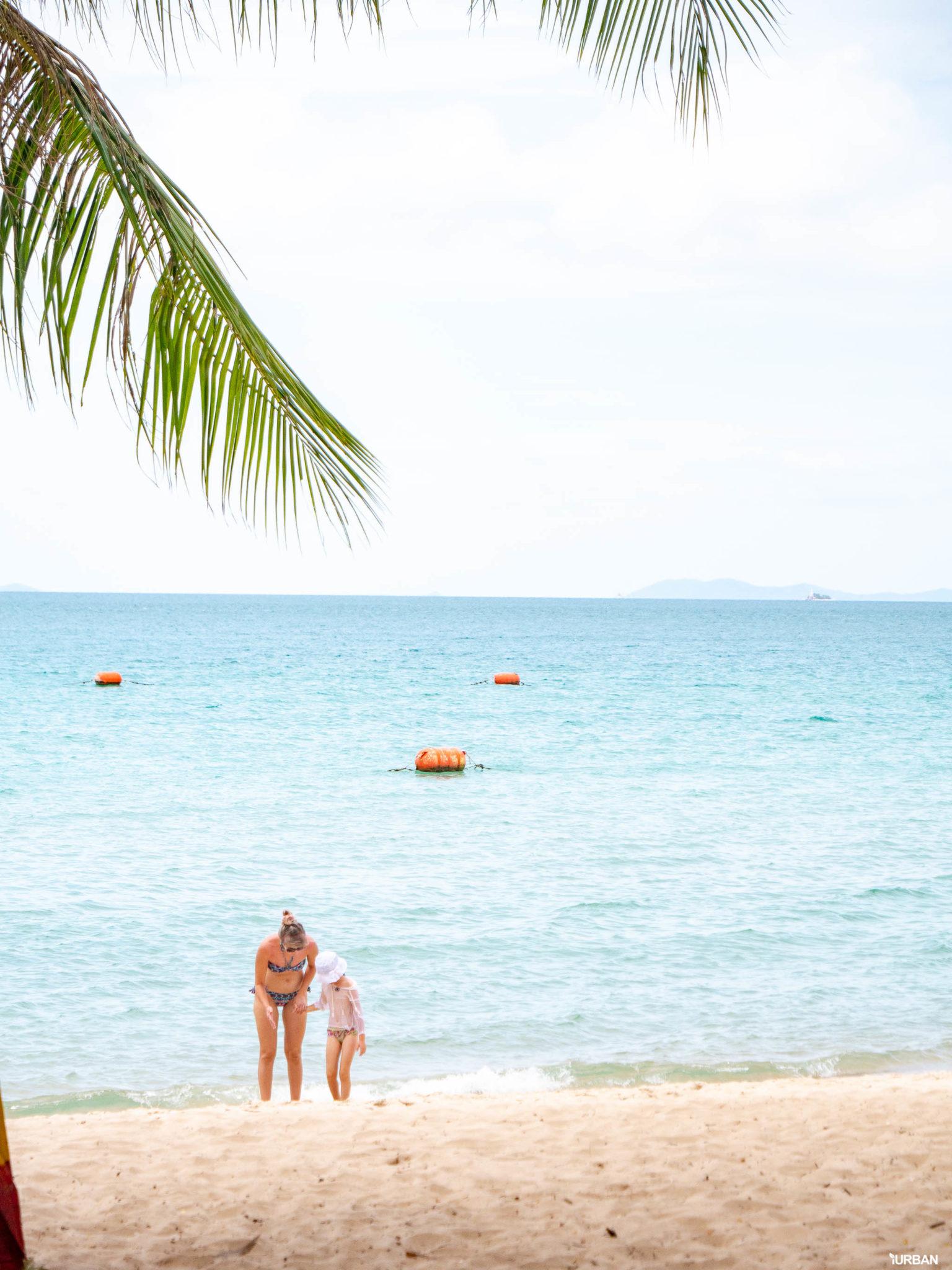 7 ชายหาดทะเลพัทยา ที่ยังสวยสะอาดน่าเที่ยวใกล้กรุงเทพ ไม่ต้องหนีร้อนไปไกล ก็พักได้ ชิลๆ 155 - Beach