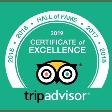 คิดส์ซาเนีย กรุงเทพ ขึ้นแท่น Excellence Hall of Fame 2019 แหล่งท่องเที่ยวยอดเยี่ยมจาก TripAdvisor 15 -
