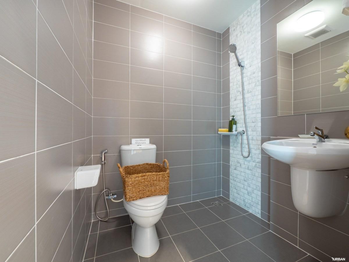 รีวิวทาวน์โฮม Pleno ปิ่นเกล้า - จรัญฯ การออกแบบที่ดีมากทั้งในบ้านและส่วนกลางที่ให้เกินราคา 80 - AP (Thailand) - เอพี (ไทยแลนด์)