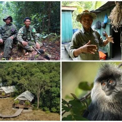 การท่องเที่ยวเชิงอนุรักษ์การปกป้องสัตว์ป่าในกัมพูชา 15 -