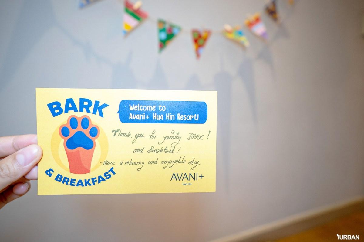 รีวิว Avani+ Hua Hin Resort พูลวิลล่าส่วนตัวสุดหรู หนึ่งในรีสอร์ทสุนัขพักได้ที่ดีที่สุดในไทยจากเชนจ์ Minor 42 - Avani