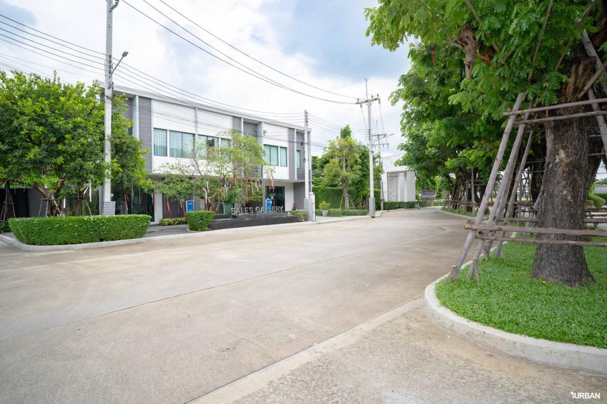 รีวิว PLENO รังสิตคลอง 4 - วงแหวน ทาวน์โฮมดี ส่วนกลางเยี่ยม ทำเลเลิศ แต่เริ่มแค่ 1.69 ล้าน 23 - AP (Thailand) - เอพี (ไทยแลนด์)