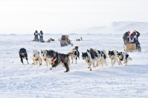 Ivakkak2015arriving Inukjuak