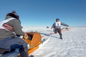 Ivakkak 2017Umiujaq Inukjuak - Musher Sandy Jaaka, and Partner Peter Qisiiq from Team 7