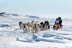 Ivakkak 2017Umiujaq Inukjuak - Team 6, Junior May and Jiika Cain Snowball
