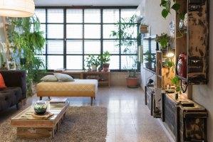 Green Interior Design   Ivan Estrada Properties
