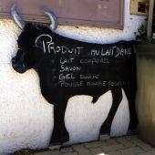 bull board
