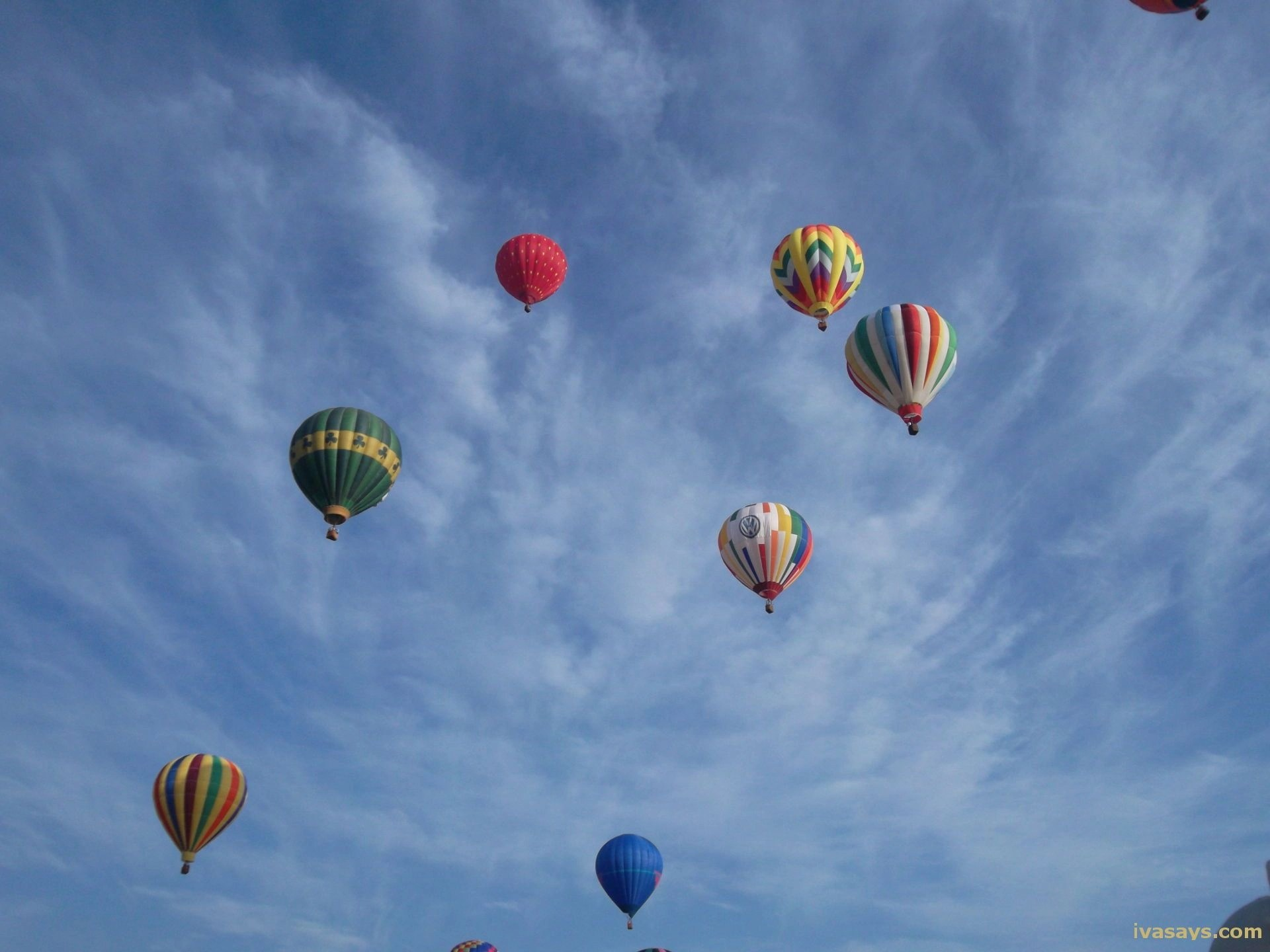 Many Hot Air Balloons at the Balloon Festival in NJ