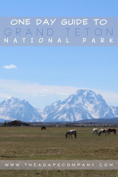 The national park in Wyoming  Grand Teton
