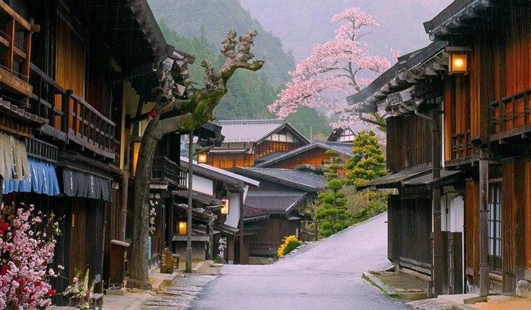 Pink tree and Japanese style houses in Nakasendo Way, Japan.