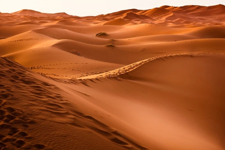 Sand hills in a desert in Morocco.