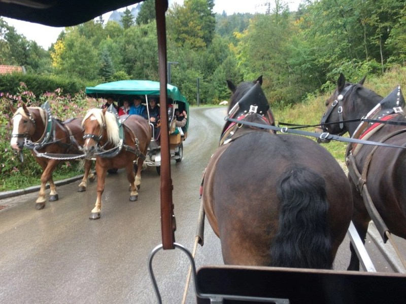 Two horse carriages passing each other on the road.