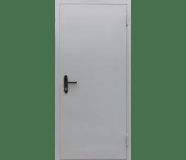 Дверь противопожарная EIS60 RAL