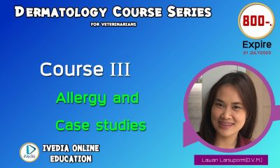 Course III : Allergy and Case Studies