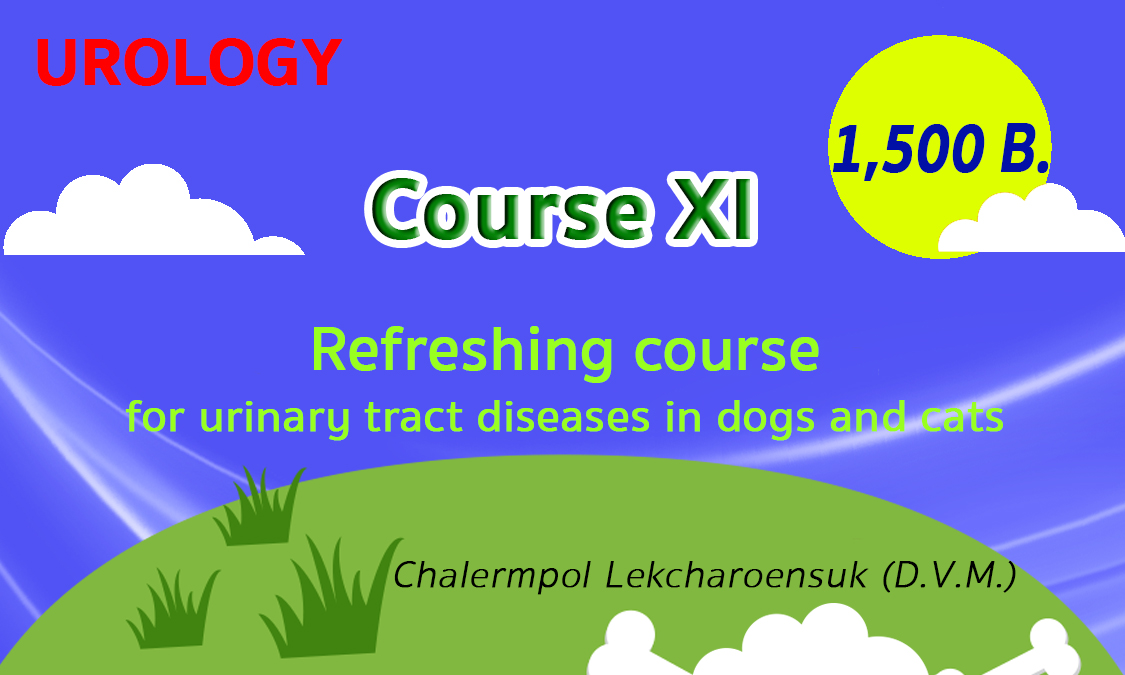 Urology-Course11