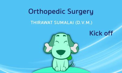 Kick off in Orthopedic Surgery