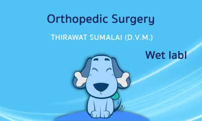 Orthopedic Surgery (Wet lab) I