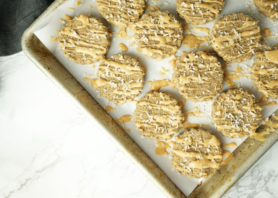 Vanilla Coconut Protein Bites