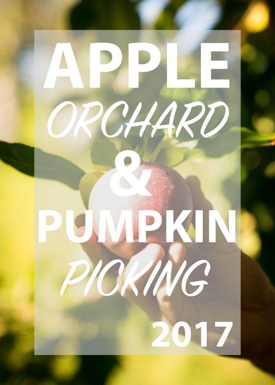 Apple Orchard & Pumpkin picking 2017