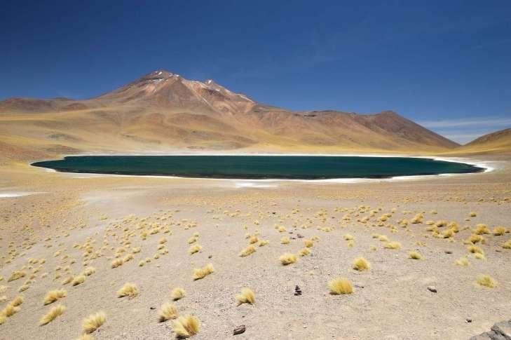 Salar de Atacama laguna Miscanti
