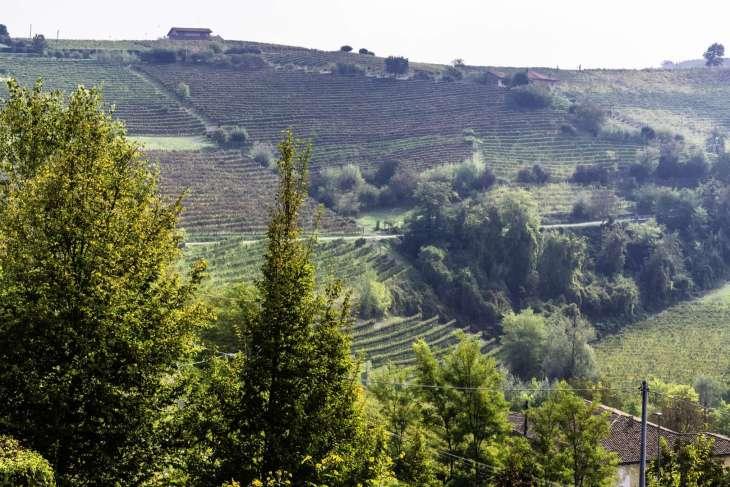 le colline dolci delle Langhe con la prima nebbia sono perfette per un itinerario in moto