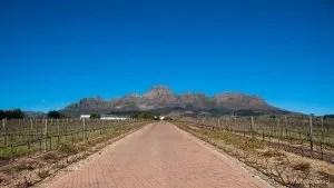 Stellenbosch, Alto Estate