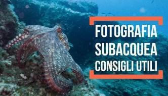 Fotografia Subacquea - Articolo