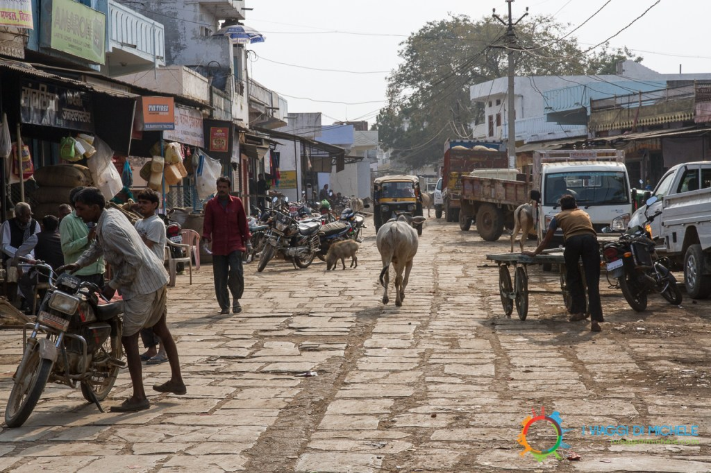 "La ""strada"" per Bijaipur - India"