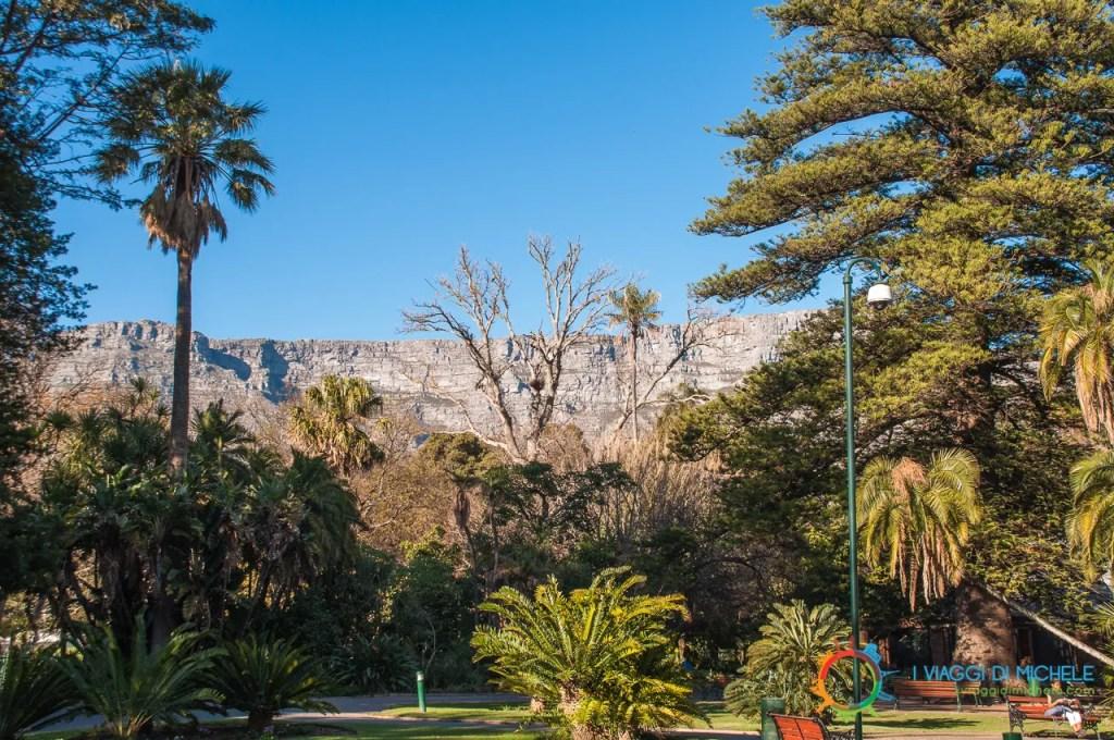 Company's Gardens - Cape Town