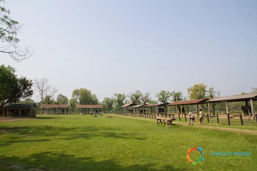 Elephant Breeeding Center - Chitwan National Park