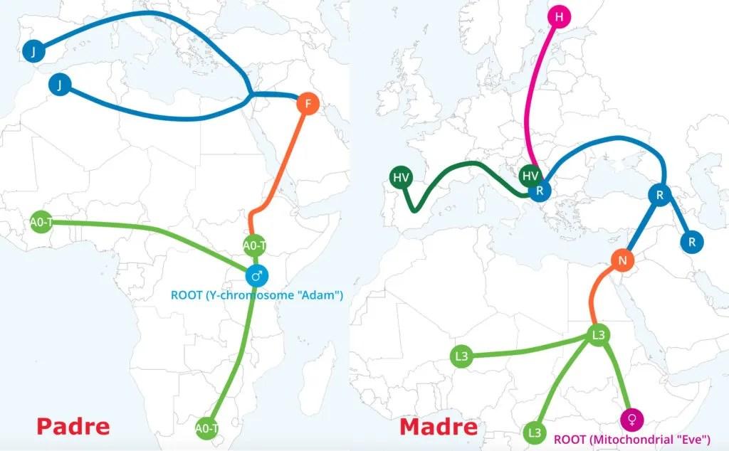 Haplogroup in dettaglio