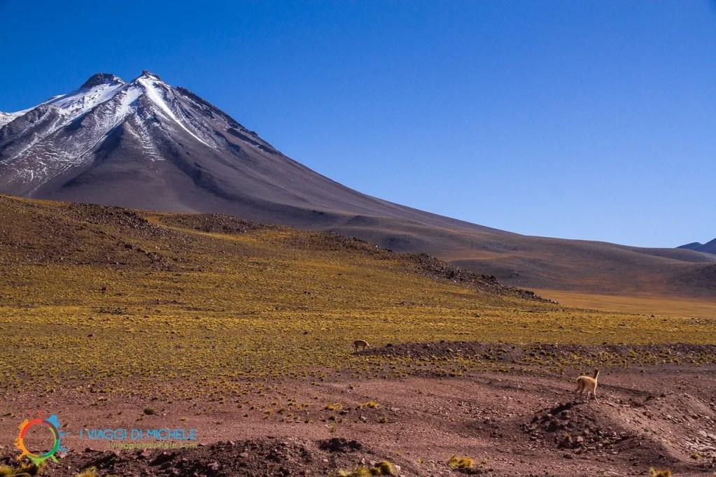 Cerro Miniques