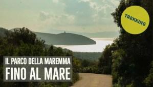 Trekking Parco della Maremma - Articolo
