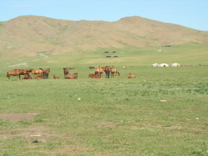 Villaggio Mongolo