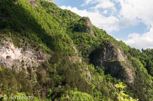 natura al Forte Pozzacchio