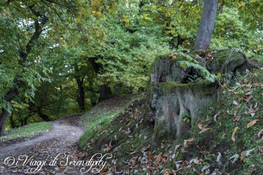 Autunno lungo il sentiero dei Castagneti
