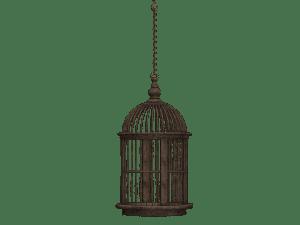 in gabbia con la libertà