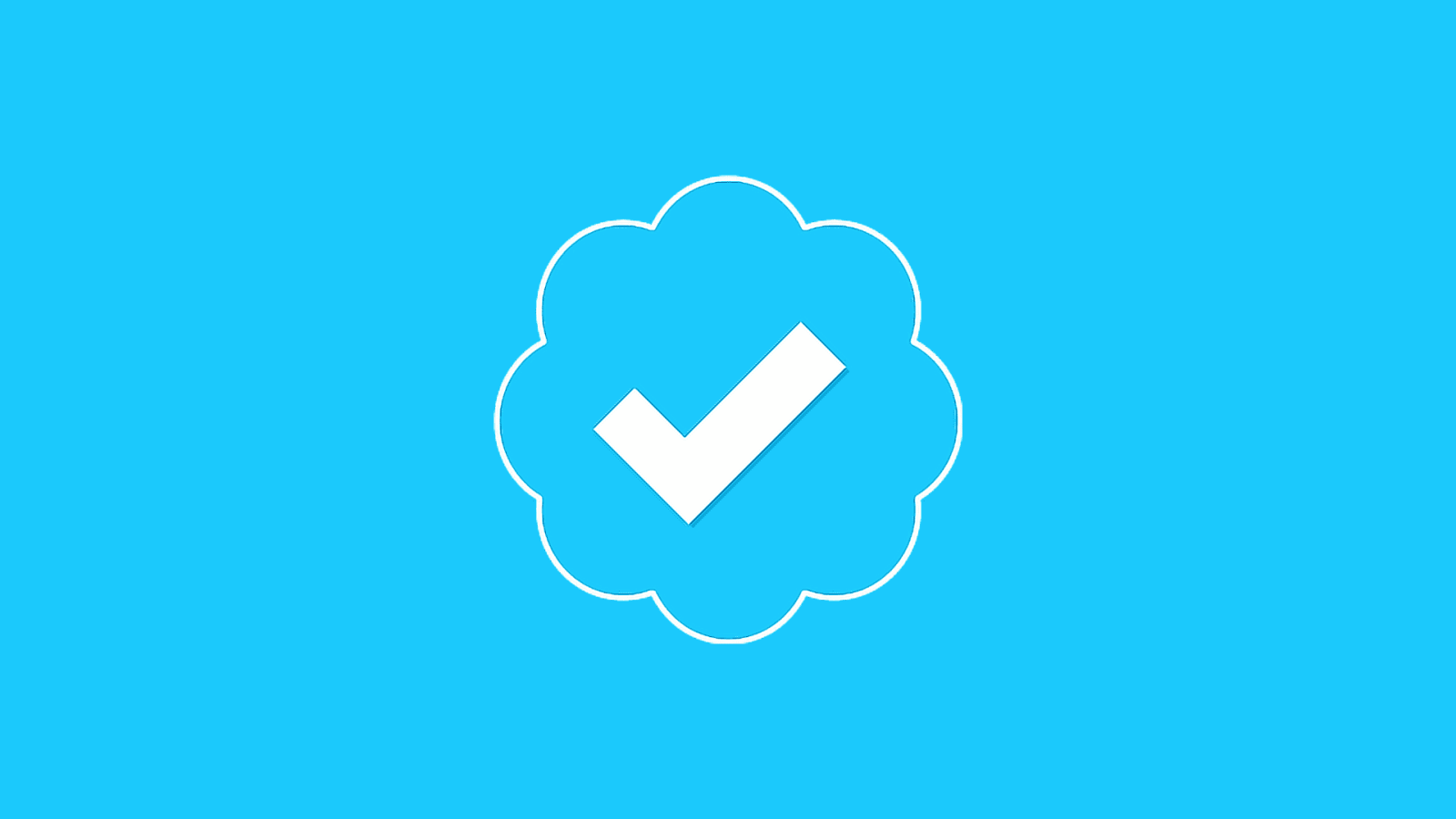 Twitter officially plan to relaunch the verification process