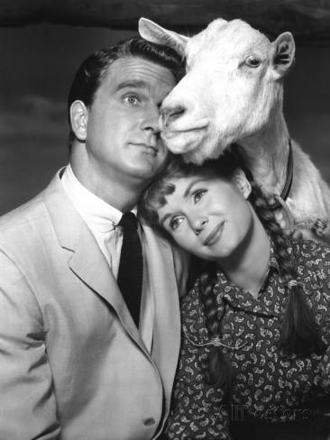 tammy-and-the-bachelor-leslie-nielsen-debbie-reynolds-1957