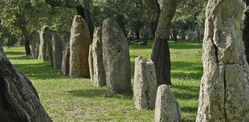 Sardinien_Goni_Pranu_Muttedu_menhir-reihe