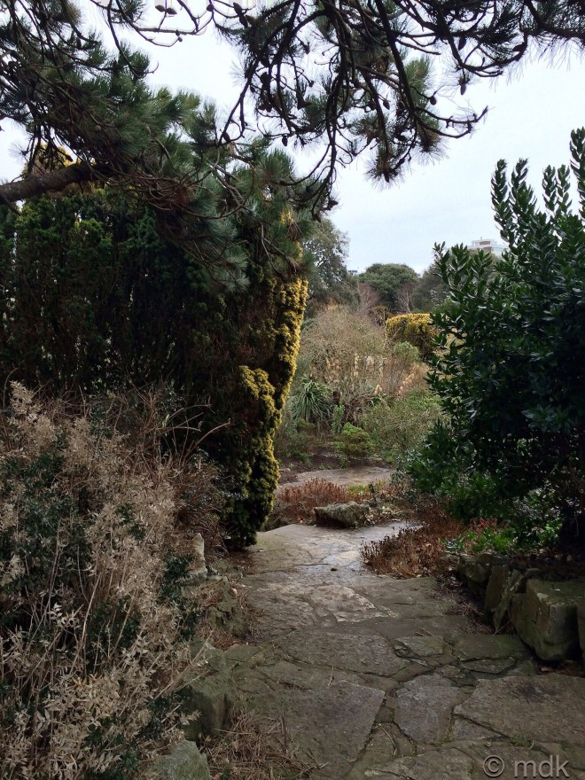 Back to the Rock Gardens