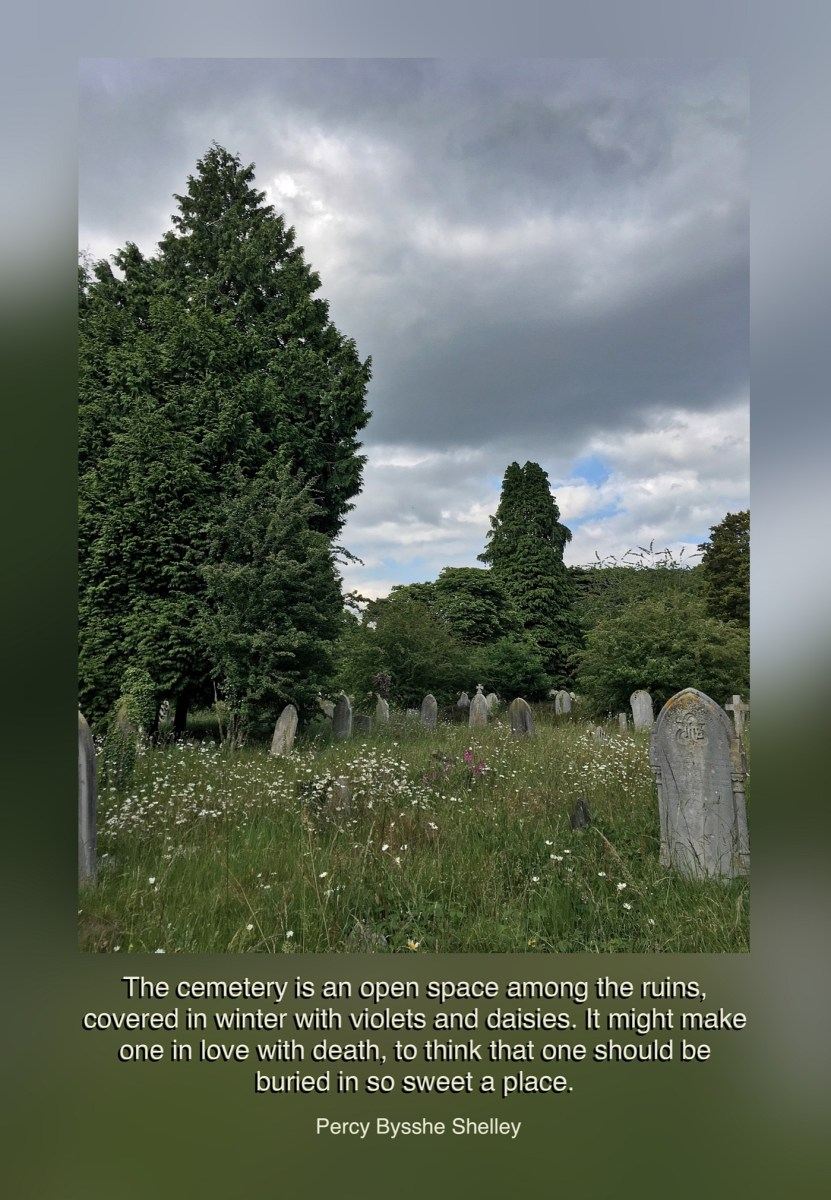 Summer tales from the Old Cemetery