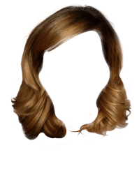 Wedding Hairstyle Ideas by Virtual Makeover Tool | iWedPlanner