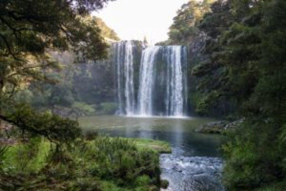 Les Whangharei Falls.