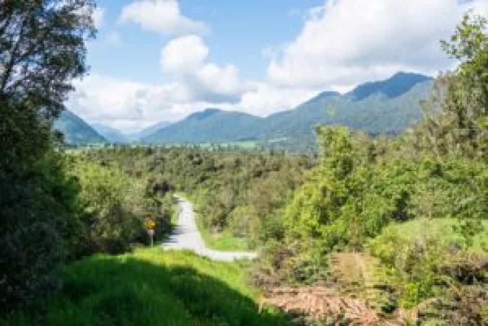 Les montagnes du parc national Artur Pass en arrière-plan.