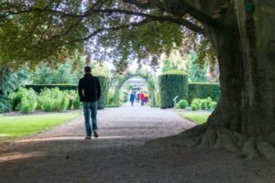 jardin botanique christchurch