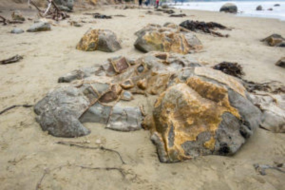 Cette matière dorée serait donc de la boue vieille de 65 millions d'années...
